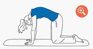Yoga: Die Katzenstellung