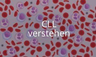 Online-Kurs CLL verstehen