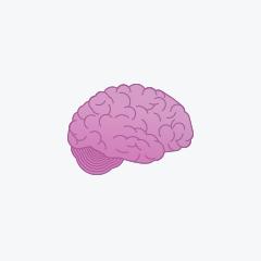 Metastasen im Gehirn bei Brustkrebs