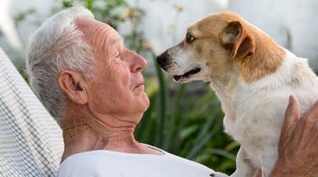 Tiergestützte-Therapie-Hunde-Therapie-Krebs-Rheuma-chronisch-Krank