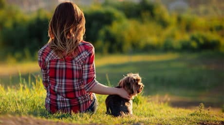 Tiere bei chronischer Erkrankung: 3 Erfahrungsberichte