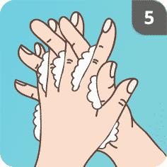 Hände mit Seife waschen Schritt 5